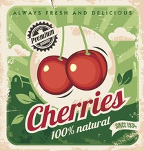 Cherries Vintage Poster Template. Organic Fruits Promotional Retro Ad. Cherry Vector Illustration.