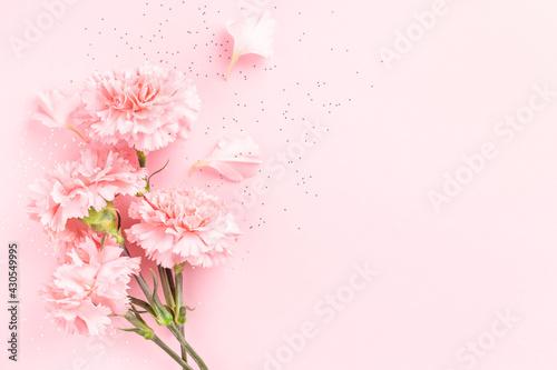 Fototapeta Pink carnations on pink background with confetti. obraz