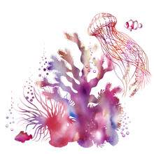 Colorful Watercolor Coral Scenery And Graphic Jellyfish.