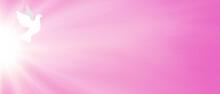 Web Banner Rosa Con Sole Raggiante E Colomba Bianca. Pentecoste. Giorno Di San Valentino. Amore. Fede. Speranza.