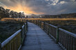 Beautiful view of a wooden walkway during a beautiful sunset in Catoira, Galicia, Spain
