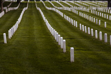 Straight Rows Of Tombstones/headstones In Arlington National Cemetery.