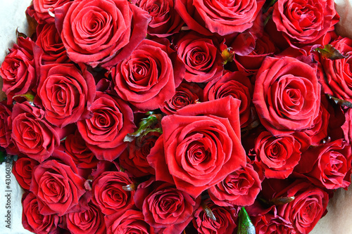 Big bouquet of fresh red roses. Beutiful background for post card #430608794