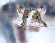 Watercolor Illustration Of A Mouse On A White Background. A Cute Animal With Big Black Eyes And Ears. The Picture Is Drawn With Paints By Hand.