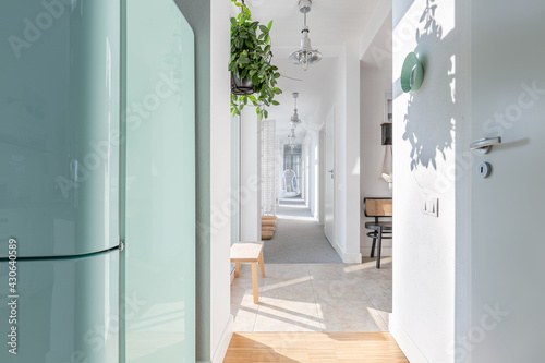 Valokuvatapetti Long white corridor with modern lightning, wooden furniture, green plant and arm