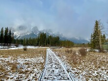 Boardwalk Through Policeman's Creek Wetlands In Canmore Alberta