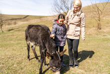 Portrait Of Mother And Daughter With Donkey