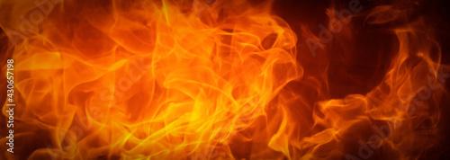 Fotografie, Obraz Fire flame texture background