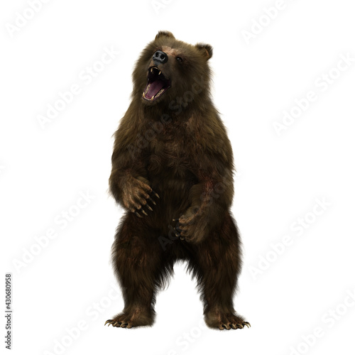 Tablou Canvas 3D illustration of a brown bear standing on hind legs and roaring isolated on white