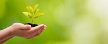 Earth Day, Environmental Protection Concept