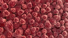 Beautiful Flowers Arranged To Create A Elegant Wall. Red, Romantic Background Formed From Bright Roses. 3D Render