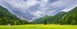 Frühlingslandschaft in Kärnthen, Österreich - Wiese mit gelbem Raps vor grün bewaldeten Bergen mit blauem HImmel - Panoramaformat