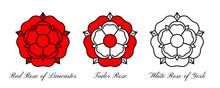 Tudoe Rose Of Englnd Vector Illustration.