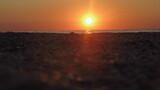 Fototapeta Fototapety z morzem do Twojej sypialni - Sunrise on the background of seashells by the sea