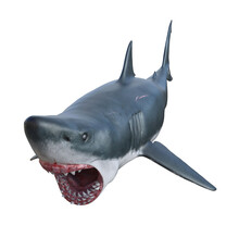 Illustration Front Angle View Of A Great White Shark In A Full Attack Isolated On A White Background.
