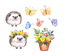 Watercolor Spring Garden Illustrations Set. Cute Hedgehog, Colorful Butterflies, Potted Pink And Yellow Flowers. Floral Bouquet And Forest Animal, Isolated On White Background. For Cards Design.