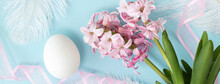 Banner With Hyacinth Flowers With One White Egg, And White Feathers, And Pink Ribbon On Pastel Blue Colors. Happy Easter Concept.