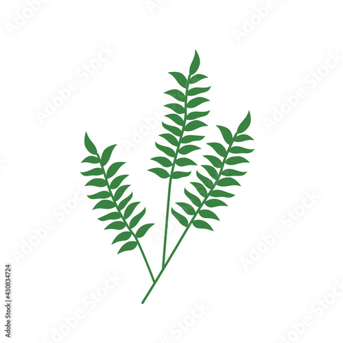 Fotografie, Obraz Twig logo with foliage