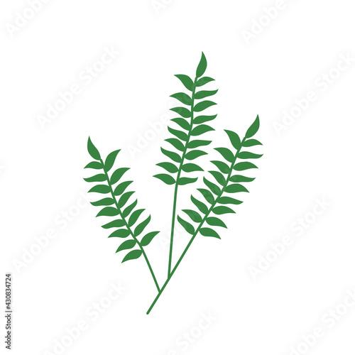 Fototapeta Twig logo with foliage