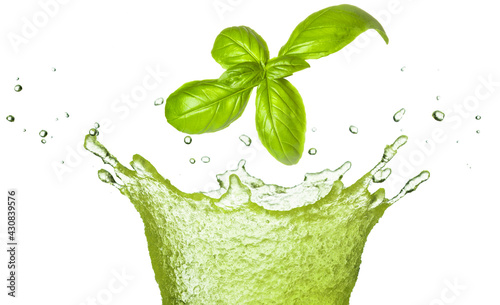 Fototapeta Basil leaf falling in green juice splash isolated on white. Herb healthy beverage. obraz
