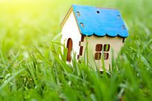 Little House On The Grass