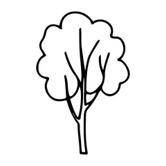 A tree in a stylized doodle style. Contour hand-drawn tree illustration for printing, web, mobile devices isolated on white background. Vector