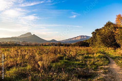 Vue sur le Pic Saint-Loup et la montagne de l'Hortus à travers la végétation dep Fototapeta