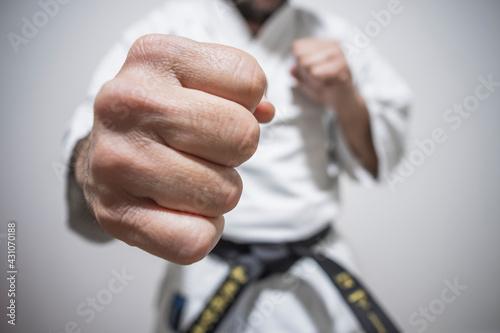Stampa su Tela grande plano soco karaté taekwondo artes marciais cinto preto