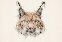 Lynx. Eurasian Lynx (lynx Lynx), Wild Cat Or Bobcat. Aquarelle, Watercolor Illustration.