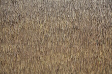 Texture Of The Dry Grass Roof Background