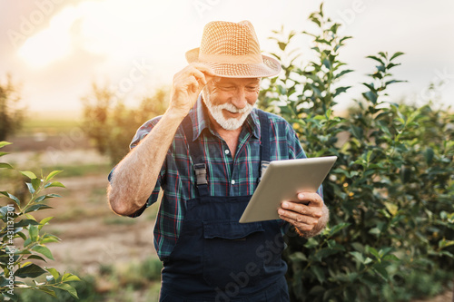 Sixty years old beard agronomist inspecting trees in orchard and using tablet computer. - fototapety na wymiar