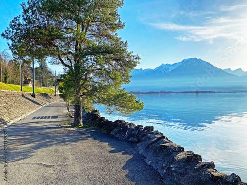 Fototapeta Recreational trails and pedestrian promenades along the eastern shore of Lake Ge