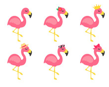 Vector Cartoon Flamingos And Flower Accessories, Glasses, Bows And Hats. Great For Summer Travel.