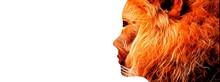 毛で覆われた抽象的な女性のイラスト