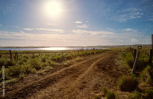 Fotografering camino de tierra que rodea un lago en un campo de la patagonia argentina