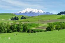 Mount Ruapehu In New Zealand
