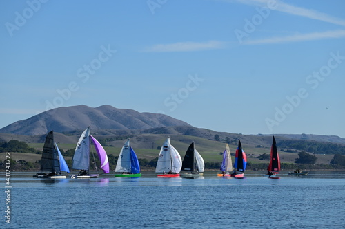 Canvas Print Sail boats in a race in a beautiful landscape