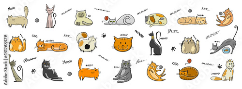World Cats Day. Collection of cats character for your design - fototapety na wymiar