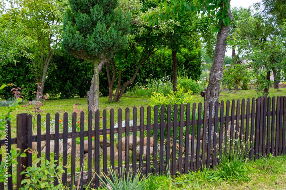Fototapeta Piękny ogródek i płot latem