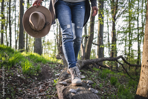 Obraz Hiking in forest. Woman wearing jeans, holding hat and walking on tree trunk. Active lifestyle in nature - fototapety do salonu