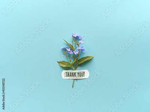 Thank you text. Forget-me-not wild flowers fixed with band aid to blue mint background. Simple greeting composition, natural light. WIld flowers attached with medical aid patch. - fototapety na wymiar