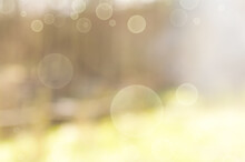 Blurred Summer-spring Light Green Background With Bokeh Elements