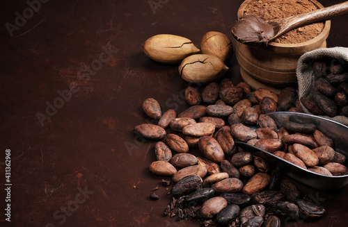 composition with cocoa beans and powder on a dark wooden table - fototapety na wymiar
