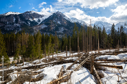 Fototapeta Scenic mountain landscape of snow covered Tatra ranges in sunny March day.. obraz
