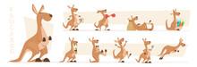 Kangaroo Characters. Wildlife Australian Animals Standing And Jumping Exact Vector Kangaroo In Action Poses