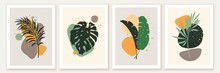 Botanical And Abstract Shapes Wall Art Design. Composition With Monstera, Banana, Palm Leaves, Green Foliage.