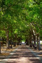 Waterfront Park Next To The Harbor In Charleston South Carolina