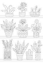 Shelves With Growing Houseplants In Flowerpots For Your Coloring