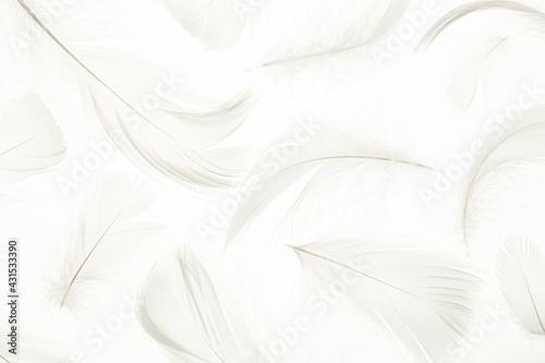 Fotografie, Obraz Feather pattern concept
