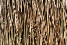 Natural Hanging Straw For Background Or Backdrop